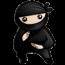System Ninja – program do oczyszczania systemu ze zbędnych plików